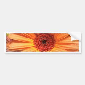 De oranje Bloem van het Boeket Bumpersticker
