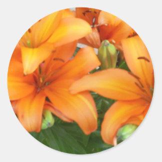 De oranje Bloemen van de Lelie Ronde Sticker