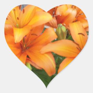 De oranje Bloemen van de Lelie Hartvormige Sticker