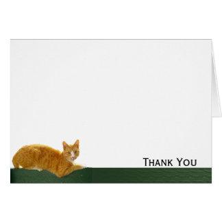 De oranje Kat van de Gestreepte kat op Groene Kaart