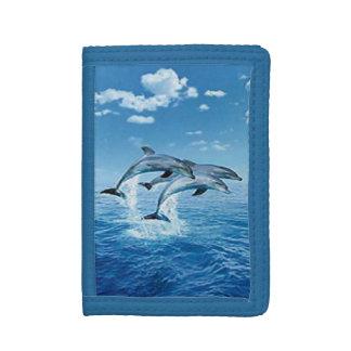 De Portefeuille van dolfijnen
