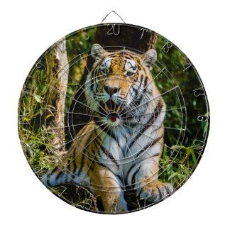 De Siberische Tijger Panthera Tigris Altaica van A Dartbord
