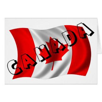 goedkope Canadese gans