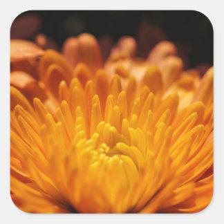De Vierkante Stickers van de oranje Bloem van de