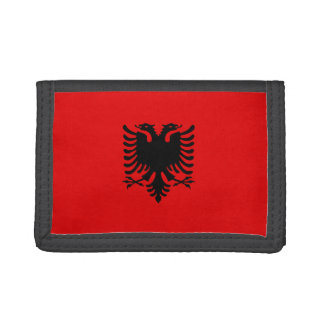 De Vlag van Albanië