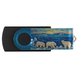 De Wartel USB 2.0 van de Aandrijving van de Flits Swivel USB 2.0 Stick