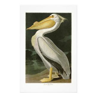 De witte Vogels van John James Audubon van de Briefpapier