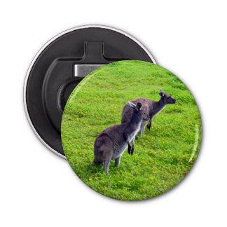 Décapsuleur Kangourous gris sur l'herbe verte, ouvreur de