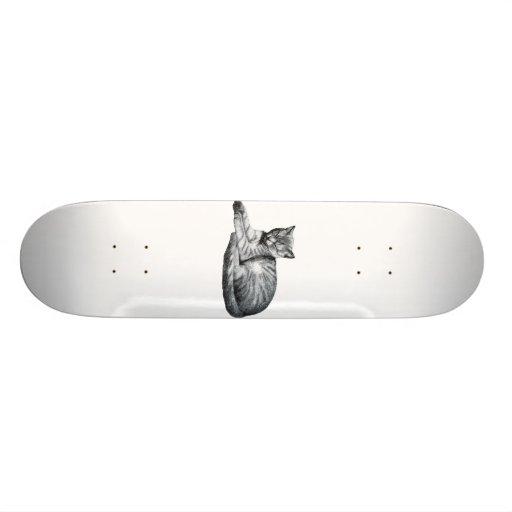 demi de croquis endormi vintage d'animal de chat plateaux de skate