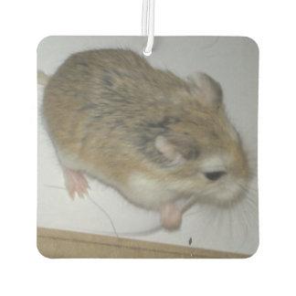 Désodorisant Pour Voiture parfum d'ambiance de Double-hamster