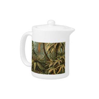 Dessin botanique de palmier vintage de fougères