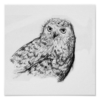 art dessins de hibou dessins de hibou posters affiches dessins de hibou. Black Bedroom Furniture Sets. Home Design Ideas