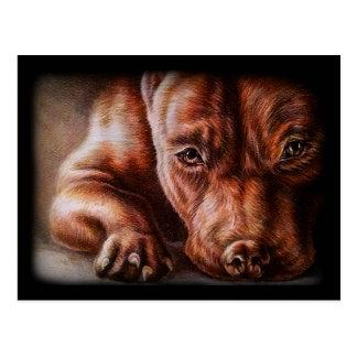 Dessin de visage de pitbull de Brown de chien de Carte Postale