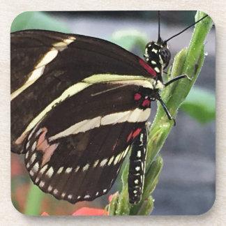 Dessous-de-verre Ailes jaunes et noires de papillon