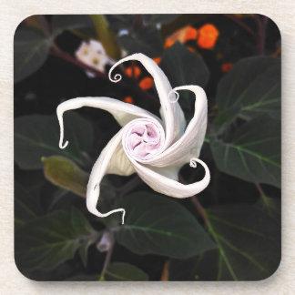 Dessous-de-verre Bourgeon floral de datura