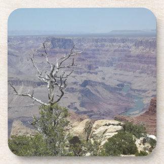 Dessous-de-verre Canyon grand Arizona
