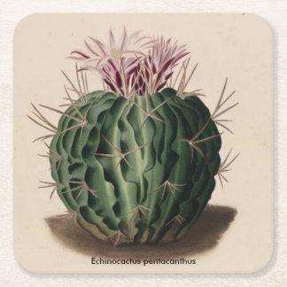 Dessous-de-verre Carré En Papier Dessous de verre de cactus de pentacanthus