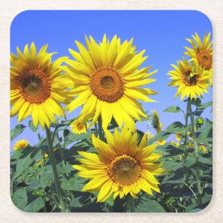 Dessous-de-verre Carré En Papier Noce jaune florale de bleu de fleur de tournesol