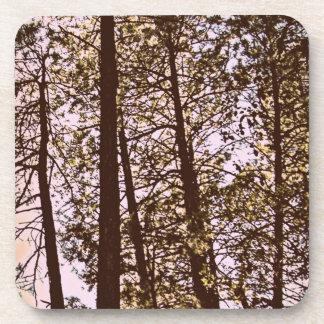 Dessous-de-verre couleur par les arbres