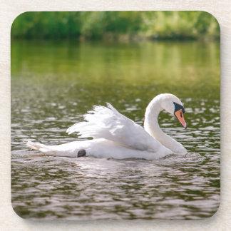 Dessous-de-verre Cygne blanc sur un lac