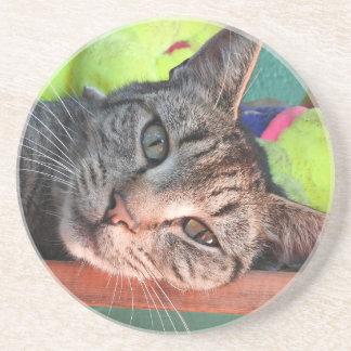 Dessous De Verre En Grès Amour de chat tigré