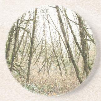 Dessous De Verre En Grès Arbres de feuille en bois de forêt augmentant