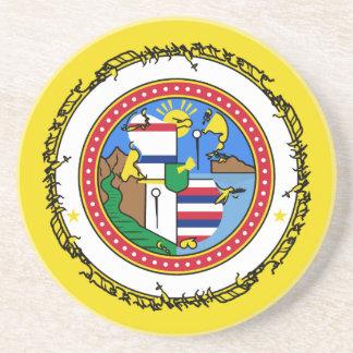 Dessous De Verre En Grès Honolulu-drapeau