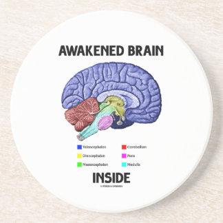 Dessous De Verre En Grès Intérieur réveillé de cerveau (anatomie de