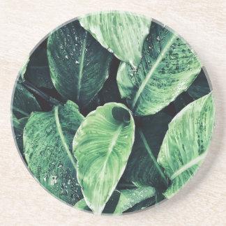Dessous De Verre En Grès La plante imprime vert l'art le Green Art