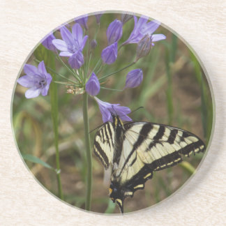 Dessous De Verre En Grès Le machaon de tigre sur le pourpre fleurit des
