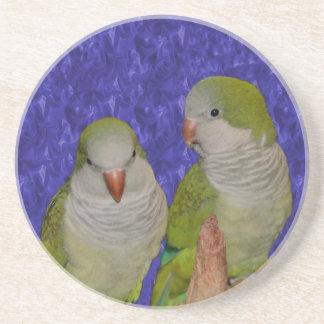 Dessous De Verre En Grès Le quaker de bébé Parrots l'animal
