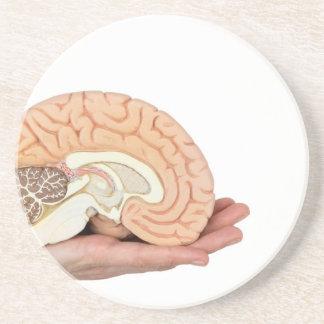 Dessous De Verre En Grès Main tenant l'hémisphère de cerveau sur l'arrière