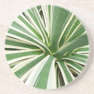 Dessous De Verre En Grès Rayure verte et blanche d'usine d'agave