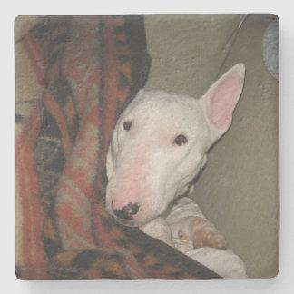 Dessous-de-verre En Pierre Bull-terrier blotti sous un couvrant (couleur)