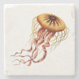 Dessous-de-verre En Pierre Dessous de verre de méduses de Haeckel