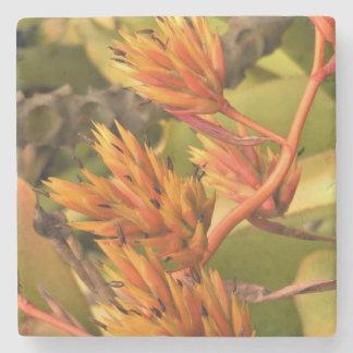 Dessous-de-verre En Pierre Fleurs oranges de Kauai
