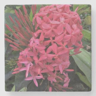 Dessous-de-verre En Pierre Fleurs rose-clair de Kauai
