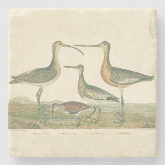 Dessous-de-verre En Pierre Marais antique côtier d'Audubon d'oiseaux