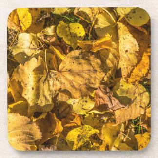Dessous de verre en plastique durs de feuille d'or
