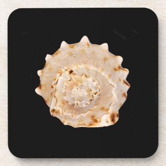 Dessous de verre en plastique durs de Shell de