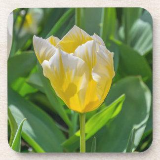 Dessous de verre en plastique durs de tulipe jaune