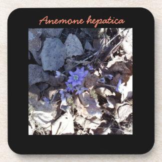 Dessous-de-verre Fleur bleue d'anémone