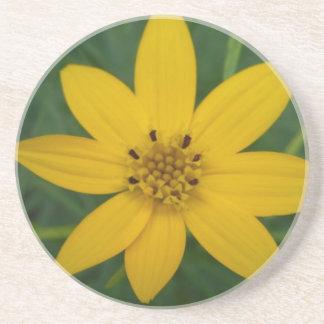 Dessous de verre floraux jaunes de grès