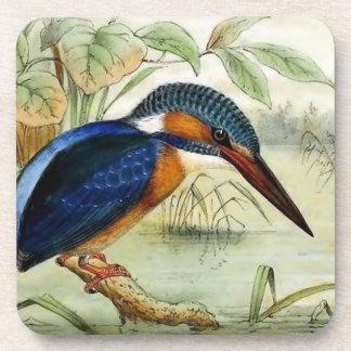 Dessous-de-verre Illustration vintage d'oiseau de martin-pêcheur