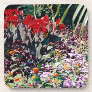 Dessous-de-verre Jardin curatif