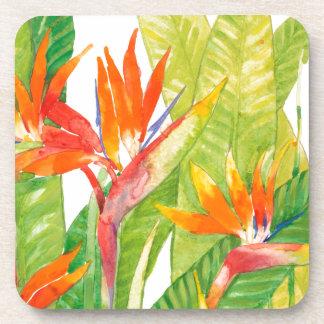Dessous-de-verre Oiseau des fleurs   du paradis tropical