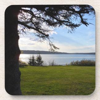 Dessous-de-verre Parc national d'Acadia, Maine