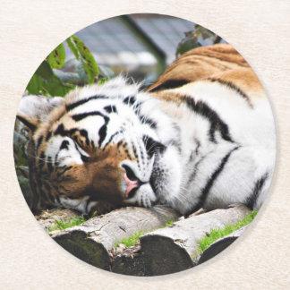 Dessous-de-verre Rond En Papier Tigre de sommeil