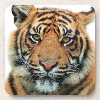Dessous-de-verre Visage de tigre
