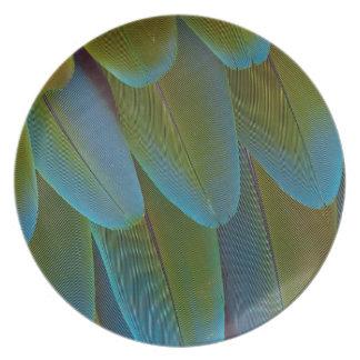 Détail de motif de plume de perroquet d'ara assiettes en mélamine
